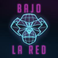 BAJO LA RED Logo con fondo_Sq